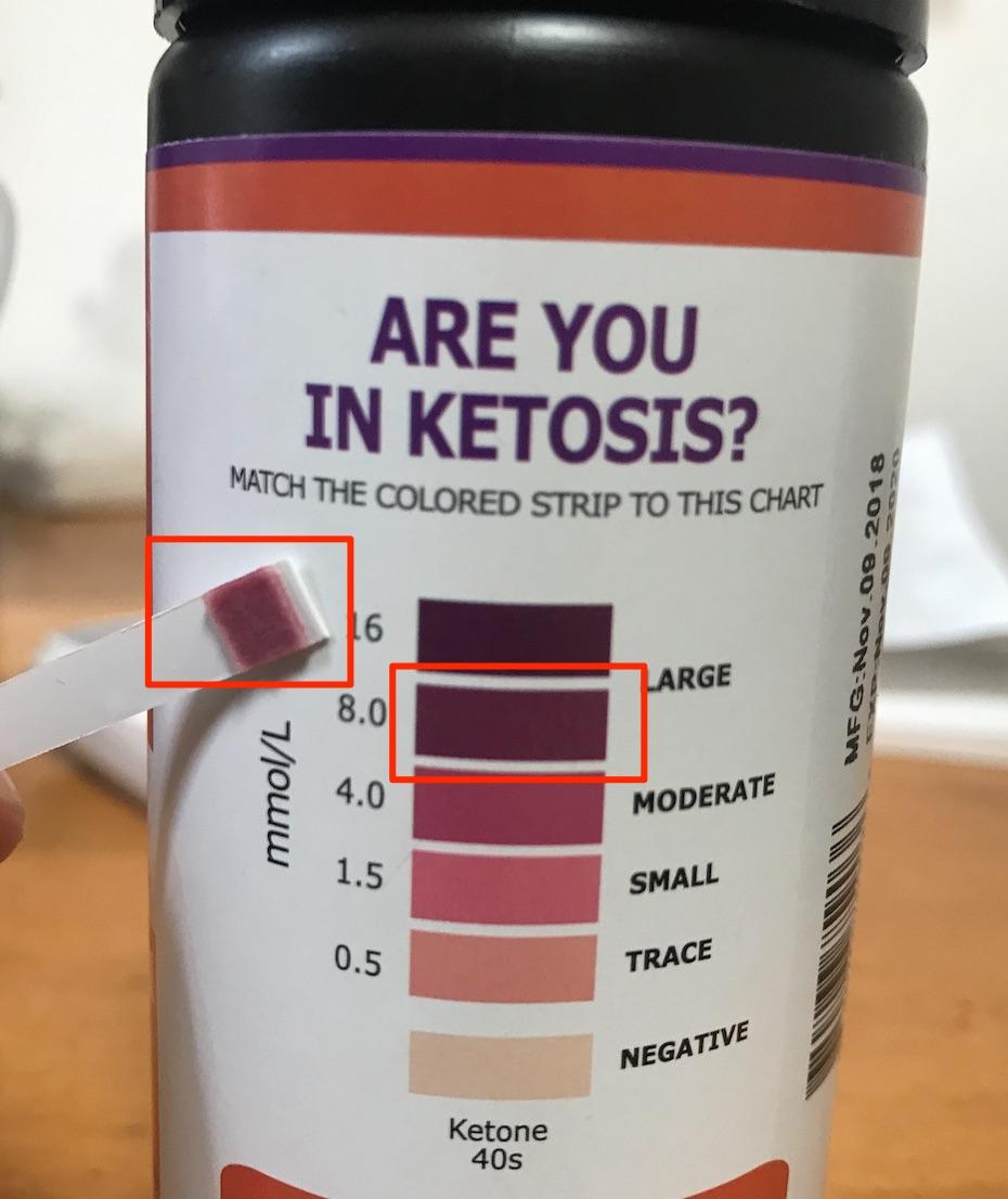 ケトン体の量