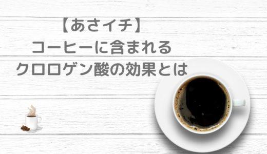 【あさイチ】コーヒーのクロロゲン酸の美容効果!肌のシミや肥満に効果的